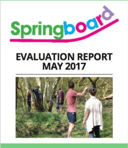 Springboard Report